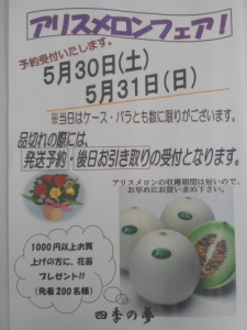 2015-05-19 13.25.09